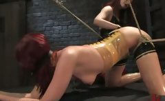 Gagged bound redhead ass whipped
